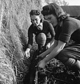 Land Girls Audrey Prickett and Betty Long set a rat trap in a hay stack as part of their training on a Sussex farm during 1942. D11231.jpg