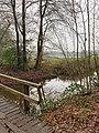 Landgoed Dickninge Drenthe Netherlands January 2021 18 43 46 073000.jpeg