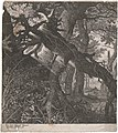 Landscape with Trees and Roots by Aegidius Sadeler after Roelant Savery Groeningemuseum 0000.GRO4398.III.jpg
