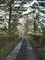 Lane at Treburrow - geograph.org.uk - 722100.jpg