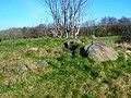 Lawthorn Mount cairn stones.JPG