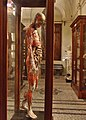 Le musée danatomie humaine (Turin) (2863076603).jpg