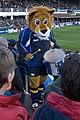 Leinster mascott.jpg