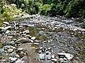 Lembah Hutan Sungai Wanga.jpg