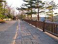 Leonard Harrison State Park Overlook 5.jpg