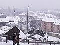 Letenské sady - panoramio (169).jpg