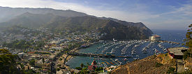 Avalon, a town on Santa Catalina Island in the Channel Islands.