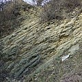 Limestone Strata, Dudley, Worcestershire - geograph.org.uk - 637048.jpg