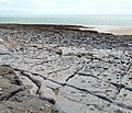 Limestone pavement and foreshore near Ogmore Southerndown Coast DMarshall2017.jpg