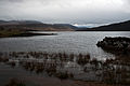 Loch Assynt, Sutherland, Scotland, 13 April 2011 - Flickr - PhillipC.jpg