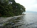 Loch Lomond Shore - geograph.org.uk - 261611.jpg