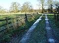 Londesborough Park - geograph.org.uk - 632193.jpg