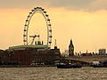 London Eye Thames.JPG