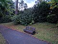 Long shot of the bench (OpenBenches 64-1).jpg