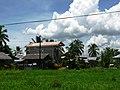 Lopez Habitat Village - panoramio.jpg