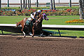 Los Alamitos Sept 2014 IMG 6805 (15314627161).jpg