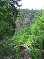Lower White River Wilderness (8615217288).jpg