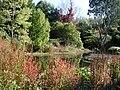 Lower pond in Trellinoe Gardens.jpg