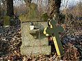 MOs810 WG 2017 2 (Notec Polder) (Gorecko, old evang. cemetery) (3).jpg