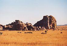 La savana nella regione dell'Isalo, sud del Madagascar