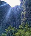 Madeira Levada walks (28525966710).jpg
