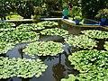 Majorelle Garden,Marrakech,Morocco.jpg