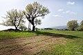 Malá Dolina - panoramio.jpg