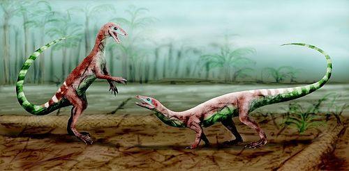 Malerisaurus