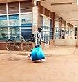 Man carrying his stuff.jpg