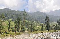 Mankial Swat valley 02.JPG