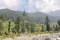 Mankial Swat valley 02.JPG