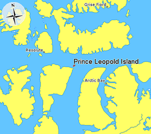Prince Leopold Island - Prince Leopold Island in relation to Grise Fiord, Resolute, and Arctic Bay.