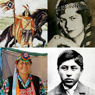 Mapuche - Image: Mapuche people