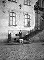 Markisinnan Lagergren med två hundar stående på trappan till Tyresö slott, 1930 - Nordiska museet - NMA.0082634.jpg