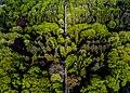 Melaten Graveyard Cologne Drone Shot (212306421).jpeg