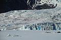 Mendenhall Glacier (7).jpg