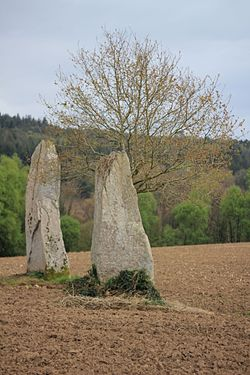 Image illustrative de l'article Menhirs de Kernars