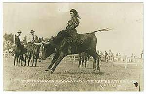 Bucking bull - Mildred Douglas riding a bucking bull circa 1917