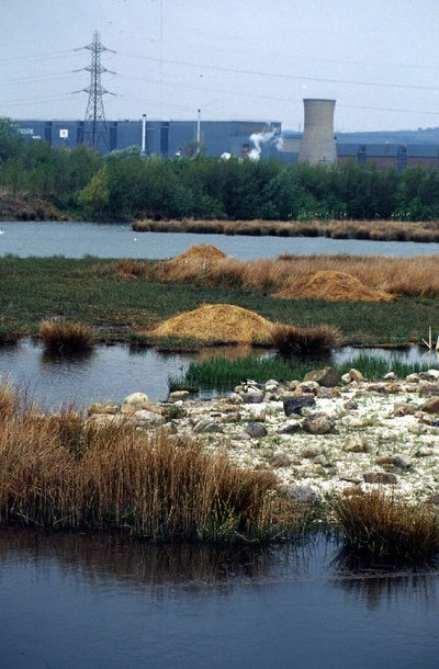 Millennium Wetlands & Trostre Works. The newly-created waterfowl sanctuary contrasts with South Wales' traditional industry.