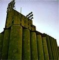 Mills Ruins Park - Minneapolis, MN - panoramio (69).jpg