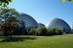 Mitchell Park Horticultural Conservatory.jpg