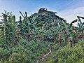 Montalban Mountains - 15.jpg