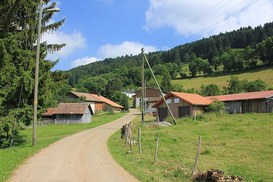 Strasse durch Montfavergier, Gemeinde Montfaucon, Kanton Jura, Schweiz