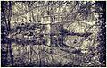 Mostek nad stawem w Parku Ujazdowskim - panoramio.jpg