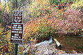 Mount Shasta Big Springs - Mount Shasta City Park - Mount Shasta City, California - DSC02768.JPG