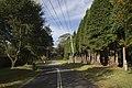 Mount Wilson NSW 2786, Australia - panoramio (63).jpg