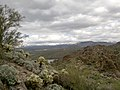 Mt. Pinter Base Loop, Tonto National Forest, Butcher Jones Trail, Fort McDowell, AZ 85264, USA - panoramio (102).jpg