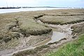 Mudflats on the Crouch - geograph.org.uk - 752793.jpg