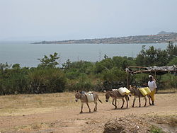 Muhuru Bay and Lake Victoria