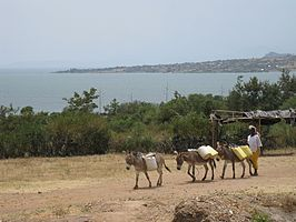 Muhuru Bay in Migori County